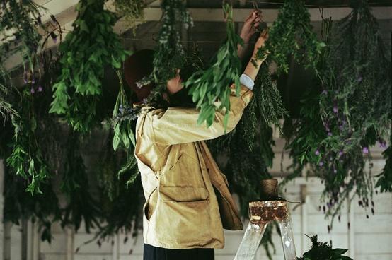 secar hierbas